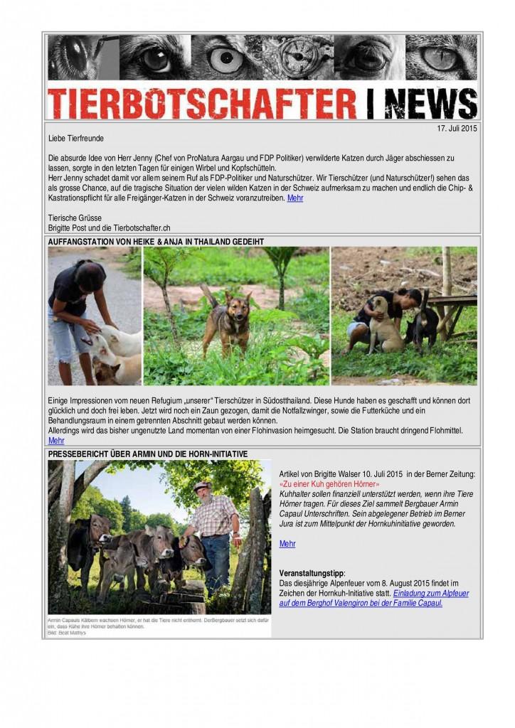 NL 17_Julli2015-page-0