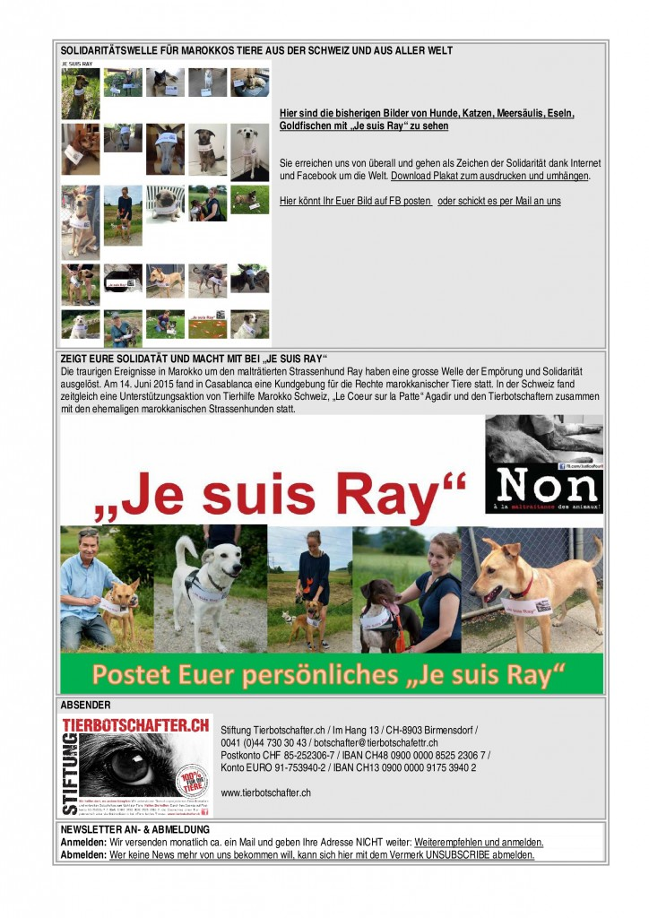 NL_1Juli15-page-1