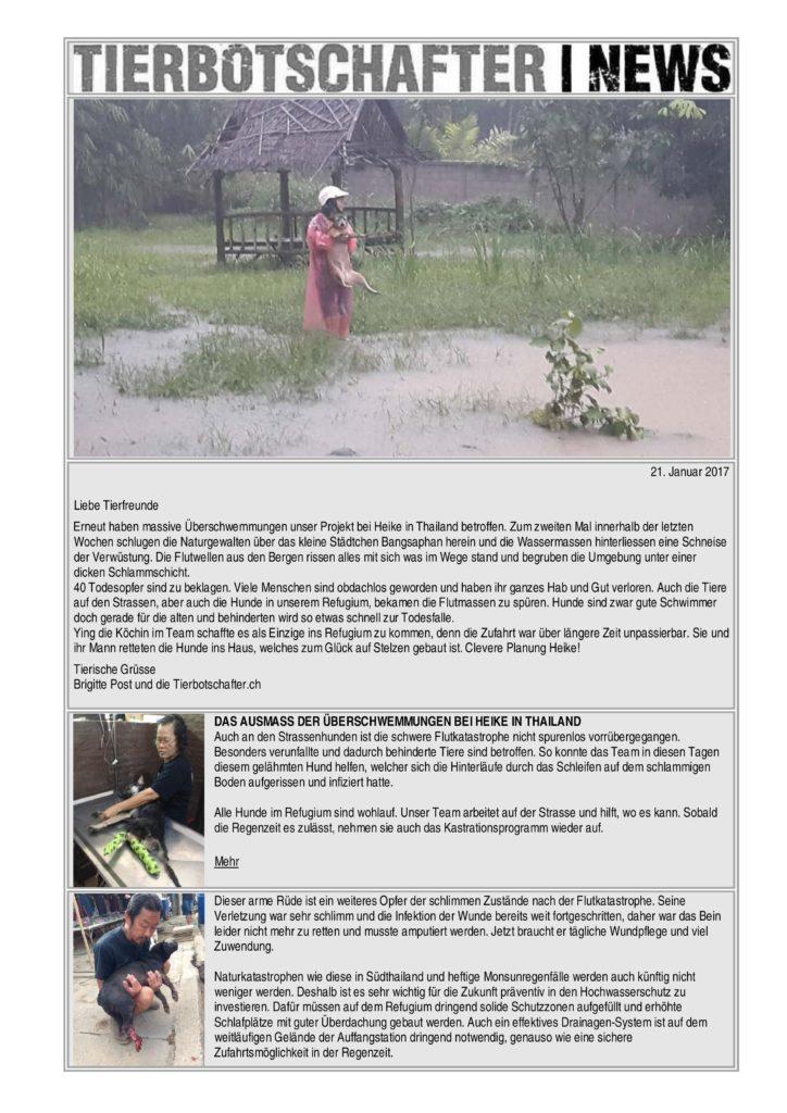 NL_21_Jan17-page-0